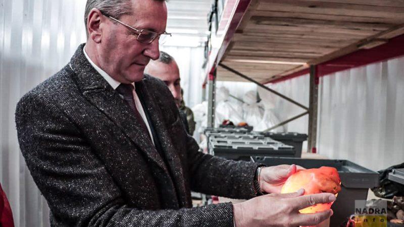 Волинський університет запроваджує бурштинову освітню програму